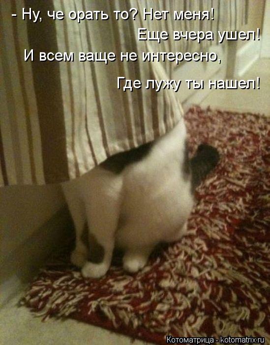 Котоматрица: - Ну, че орать то? Нет меня! Еще вчера ушел! И всем ваще не интересно, Где лужу ты нашел!