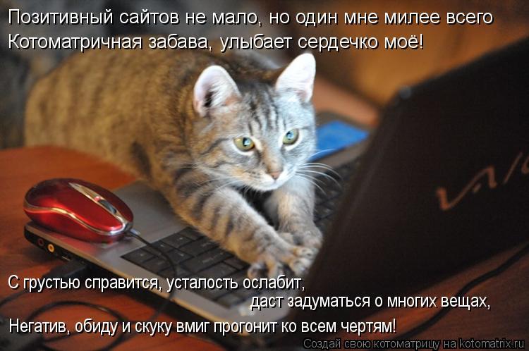 Котоматрица: Позитивный сайтов не мало, но один мне милее всего Котоматричная забава, улыбает сердечко моё! С грустью справится, усталость ослабит,   дас