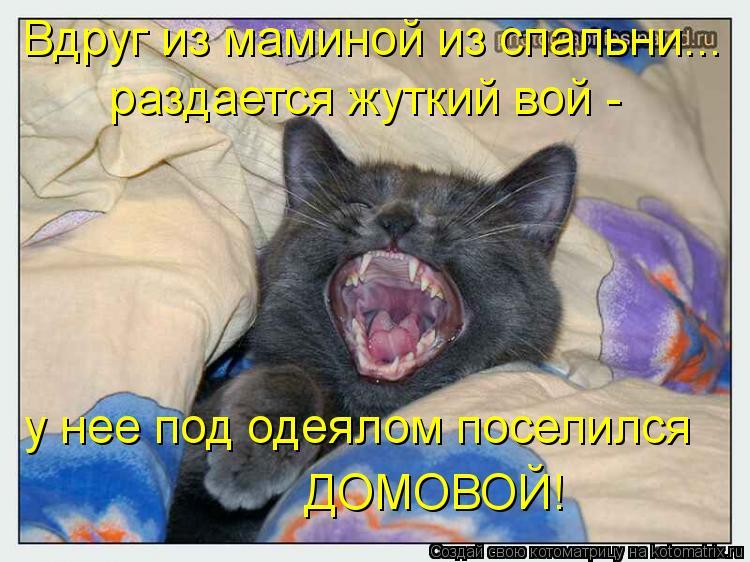 Котоматрица: Вдруг из маминой из спальни... у нее под одеялом поселился  ДОМОВОЙ!  раздается жуткий вой -