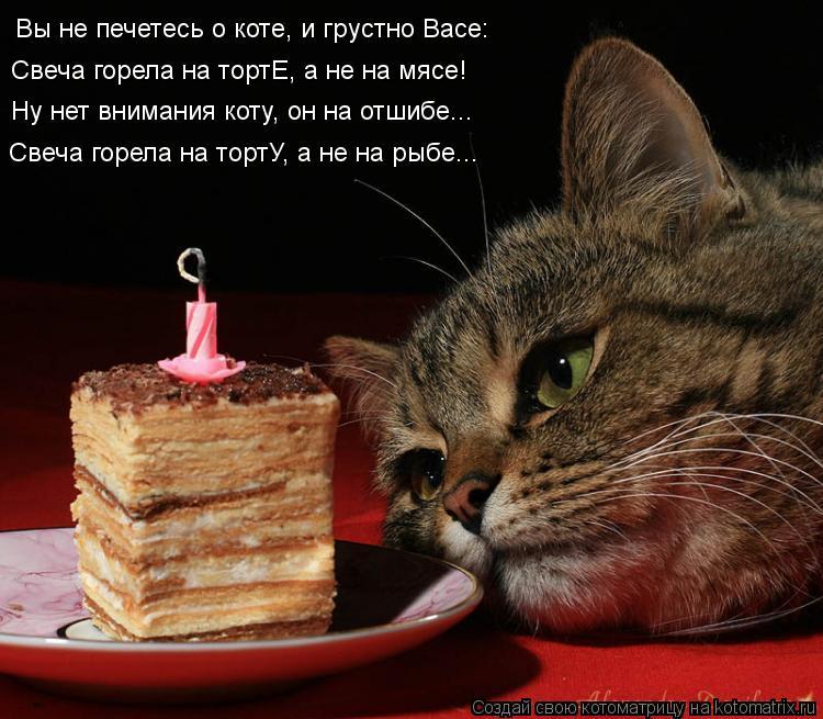 Котоматрица: Вы не печетесь о коте, и грустно Васе: Свеча горела на тортЕ, а не на мясе! Ну нет внимания коту, он на отшибе... Свеча горела на тортУ, а не на ры