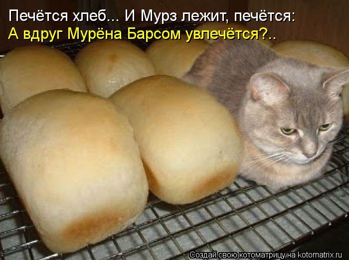 Котоматрица: Печётся хлеб... И Мурз лежит, печётся: А вдруг Мурёна Барсом увлечётся?..