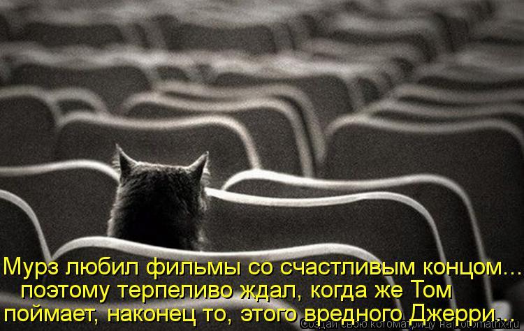 Котоматрица: Мурз любил фильмы со счастливым концом... поэтому терпеливо ждал, когда же Том поймает, наконец то, этого вредного Джерри...