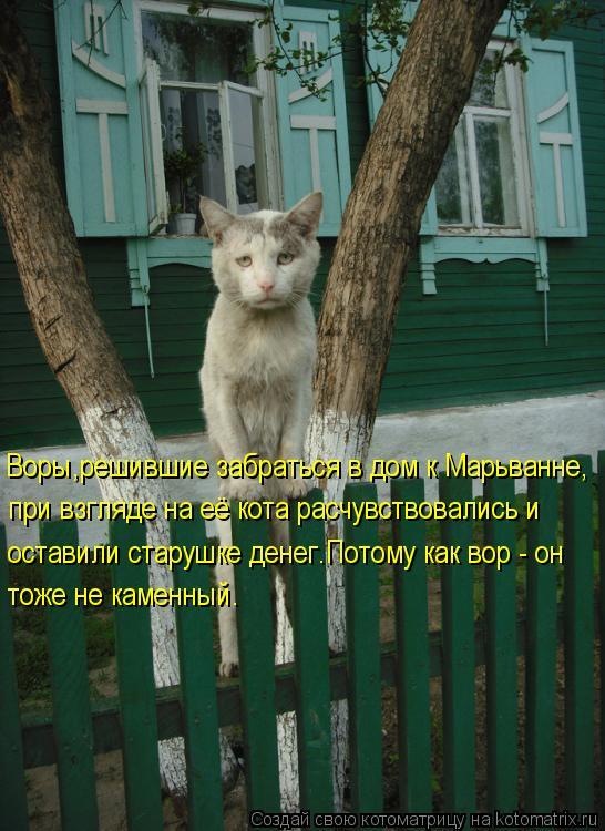 Котоматрица: при взгляде на её кота расчувствовались и оставили старушке денег.Потому как вор - он тоже не каменный. Воры,решившие забраться в дом к Марь