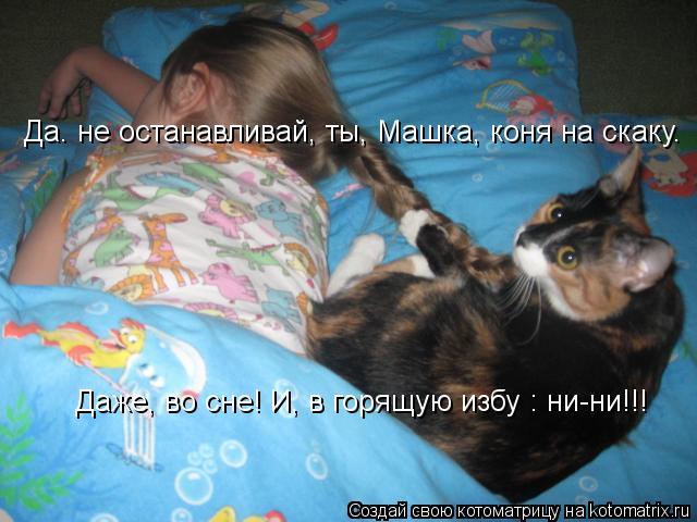 Котоматрица: Да. не останавливай, ты, Машка, коня на скаку. Даже, во сне! И, в горящую избу : ни-ни!!!