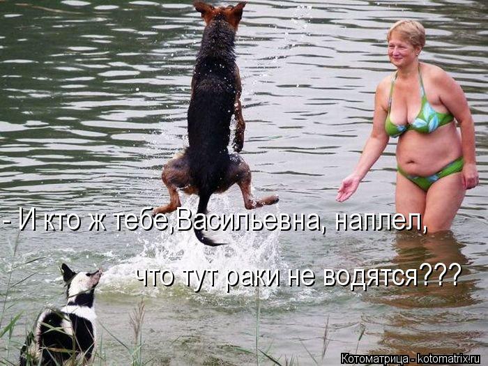 Котоматрица: - И кто ж тебе,Васильевна, наплел,  что тут раки не водятся???