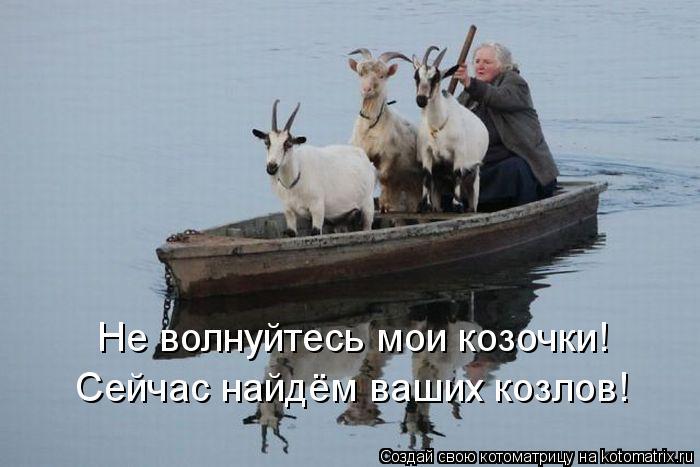 Котоматрица: Не волнуйтесь мои козочки! Сейчас найдём ваших козлов!