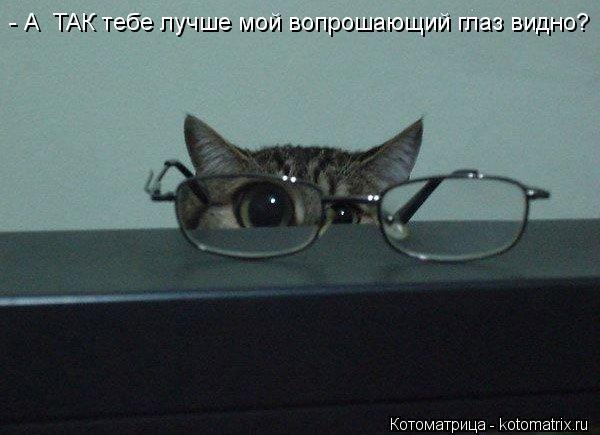 Котоматрица: - А  ТАК тебе лучше мой вопрошающий глаз видно?