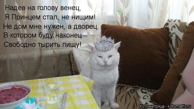 Котоматрица: Надев на голову венец, Я Принцем стал, не нищим! Не дом мне нужен, а дворец, В котором буду наконец Свободно тырить пищу!