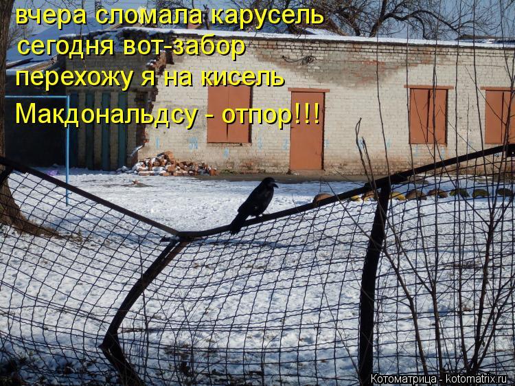 Котоматрица: вчера сломала карусель сегодня вот-забор перехожу я на кисель Макдональдсу - отпор!!!