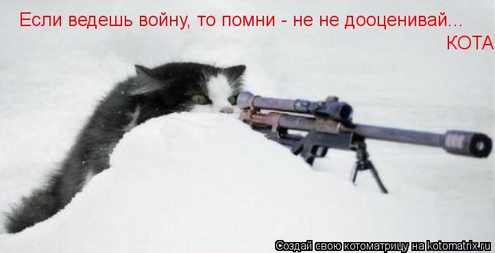 Котоматрица: Если ведешь войну, то помни - не не дооценивай... КОТА