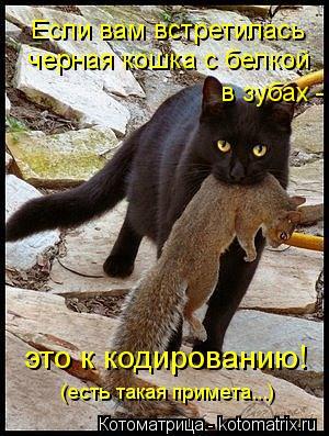 Котоматрица: Если вам встретилась черная кошка с белкой в зубах - это к кодированию! (есть такая примета...)