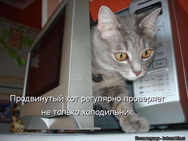 http://kotomatrix.ru/images/lolz/2012/05/13/52fcd7147f.jpg
