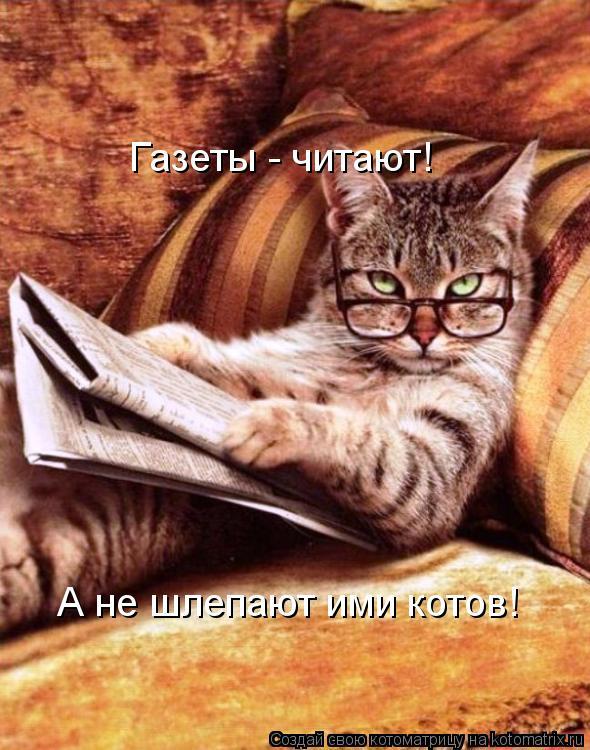 Котоматрица: Газеты - читают! А не шлепают ими котов!