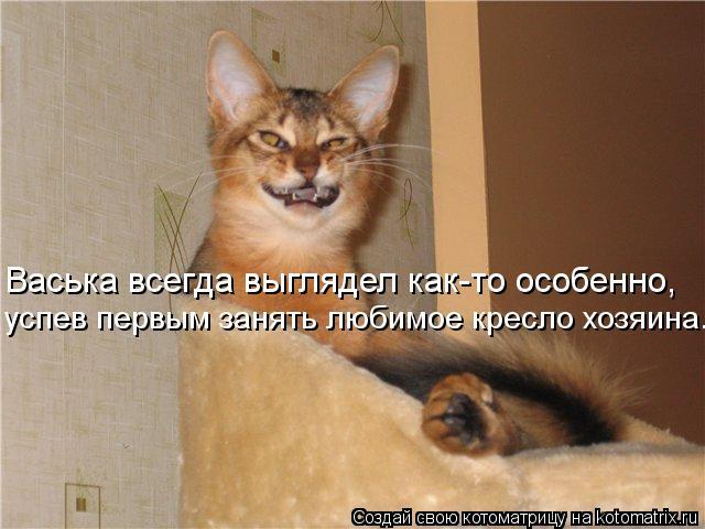 Котоматрица: Васька всегда выглядел как-то особенно, успев первым занять любимое кресло хозяина...