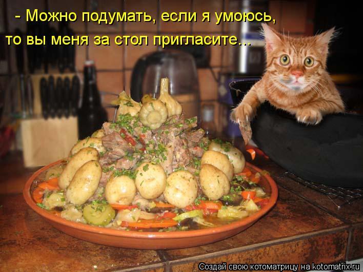 Котоматрица: - Можно подумать, если я умоюсь,  то вы меня за стол пригласите...