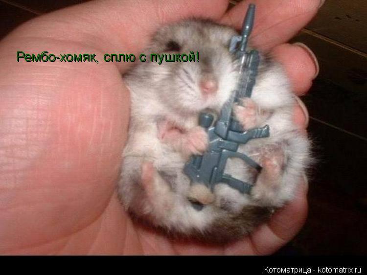 смайлик хомяк: