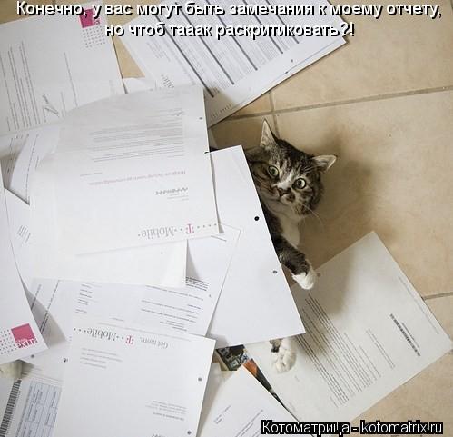 Котоматрица: Конечно, у вас могут быть замечания к моему отчету, но чтоб тааак раскритиковать?!