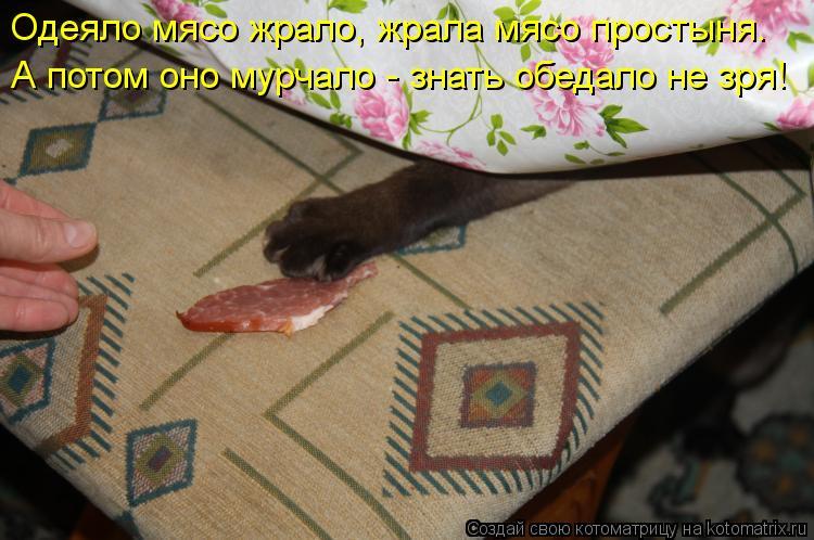 Котоматрица: Одеяло мясо жрало, жрала мясо простыня.  А потом оно мурчало - знать обедало не зря!