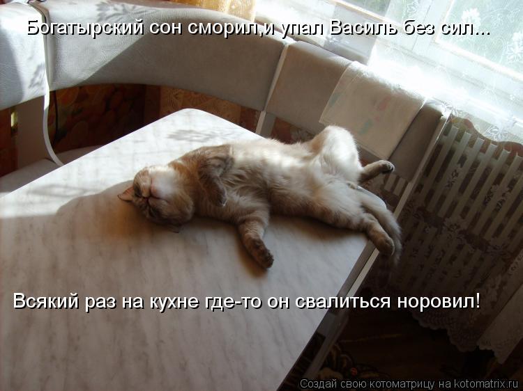 Котоматрица: Богатырский сон сморил,и упал Василь без сил... Всякий раз на кухне где-то он свалиться норовил!
