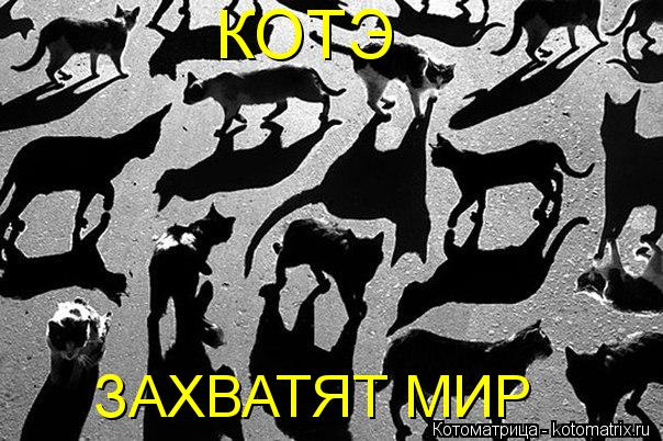 http://kotomatrix.ru/images/lolz/2012/05/25/648b79e848.jpg