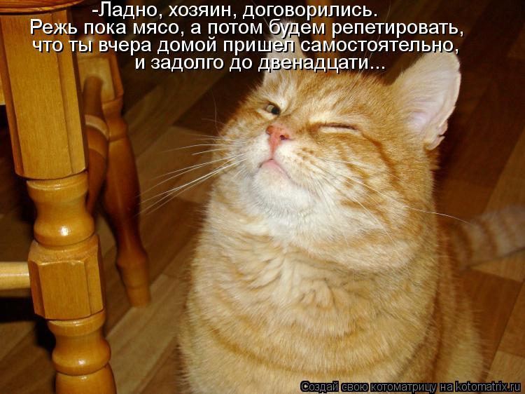Котоматрица: и задолго до двенадцати... что ты вчера домой пришел самостоятельно, Режь пока мясо, а потом будем репетировать, -Ладно, хозяин, договорились.