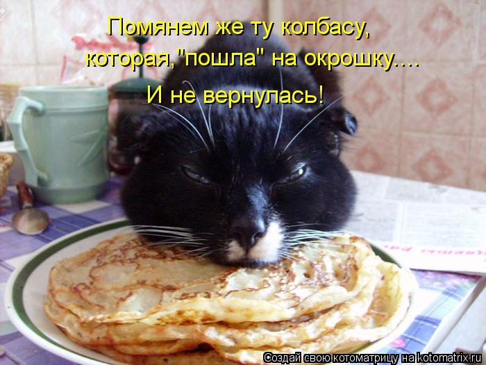 """Котоматрица: Помянем же ту колбасу, которая,""""пошла"""" на окрошку.... И не вернулась!"""