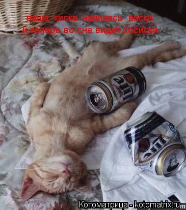 Котоматрица: ваша  киска  напилась  виски и теперь во сне видит сосиски