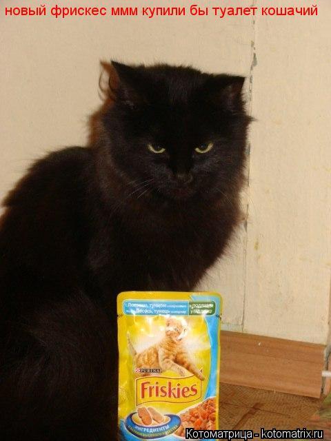 Котоматрица: новый фрискес ммм купили бы туалет кошачий