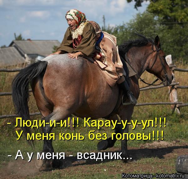 Котоматрица: У меня конь без головы!!! - Люди-и-и!!! Карау-у-у-ул!!! - А у меня - всадник...
