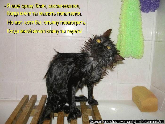 Котоматрица: - Я ещё сразу, блин, засомневался, Когда меня ты мылить попытался. Но мог, хотя бы, спъяну посмотреть, Когда мной начал спину ты тереть!