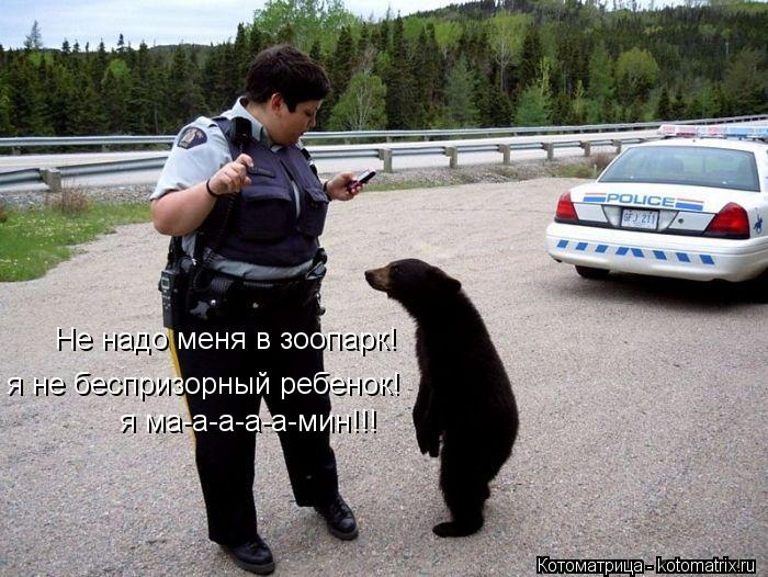 Котоматрица: Не надо меня в зоопарк!  я не беспризорный ребенок! я ма-а-а-а-а-мин!!!