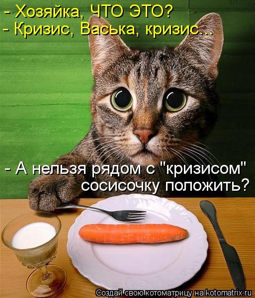 """Котоматрица: - Хозяйка, ЧТО ЭТО? - Кризис, Васька, кризис... - А нельзя рядом с """"кризисом"""" сосисочку положить?"""