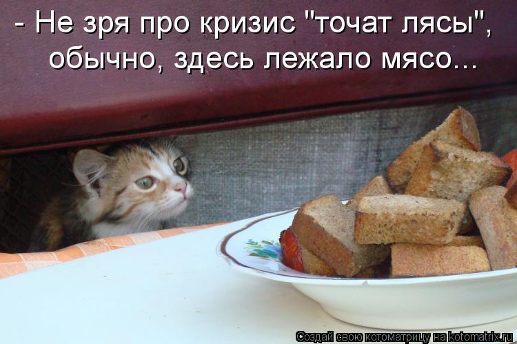 """Котоматрица: - Не зря про кризис """"точат лясы"""", обычно, здесь лежало мясо..."""
