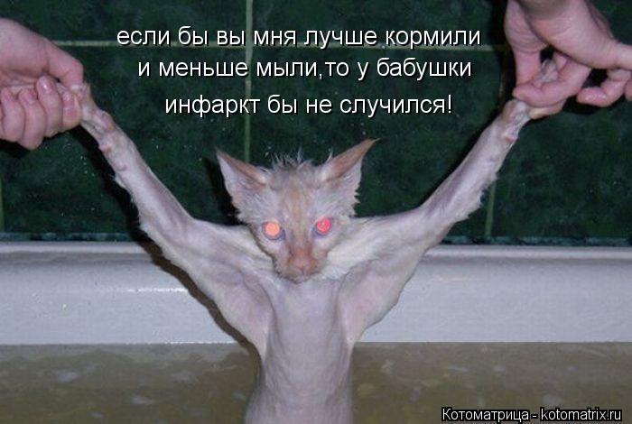 http://kotomatrix.ru/images/lolz/2012/05/30/EK.jpg