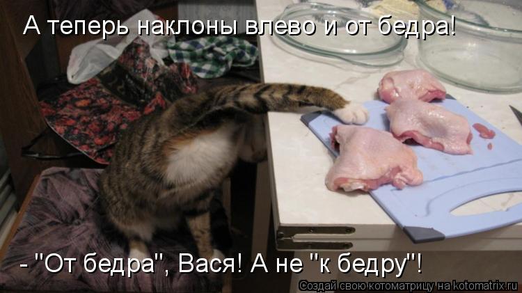 """Котоматрица: А теперь наклоны влево и от бедра! - """"От бедра"""", Вася! А не """"к бедру""""!"""