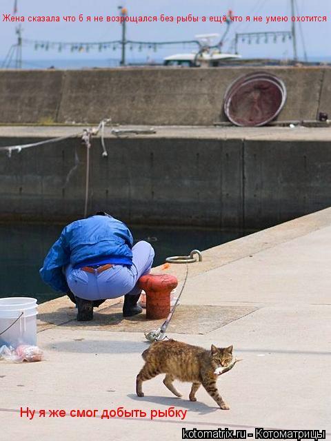 Котоматрица: Жена сказала что б я не возрощался без рыбы а ещё что я не умею охотится Ну я же смог добыть рыбку