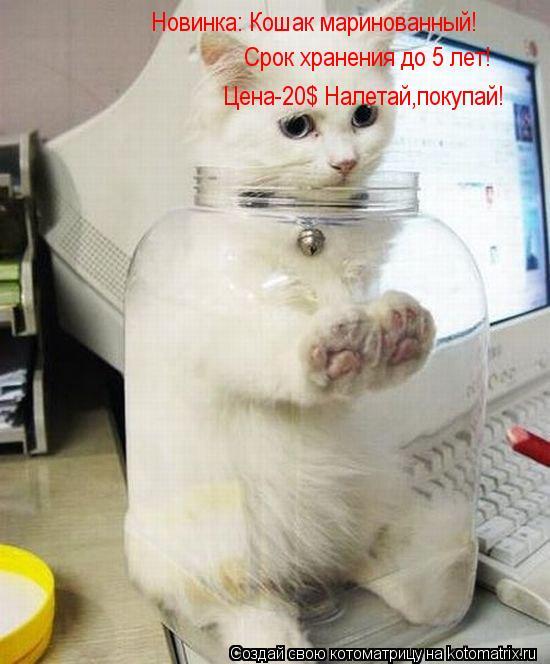 Котоматрица: Новинка: Кошак маринованный!  Срок хранения до 5 лет! Цена-20$ Налетай,покупай!