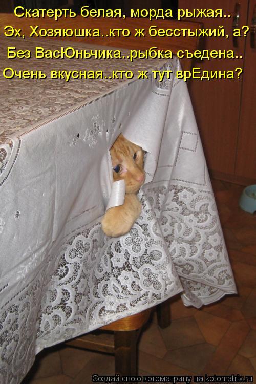 Котоматрица: Скатерть белая, морда рыжая..  Эх, Хозяюшка..кто ж бесстыжий, а? Без ВасЮньчика..рыбка съедена.. Очень вкусная..кто ж тут врЕдина?