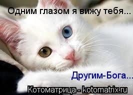 Котоматрица: Одним глазом я вижу тебя... Другим-Бога...