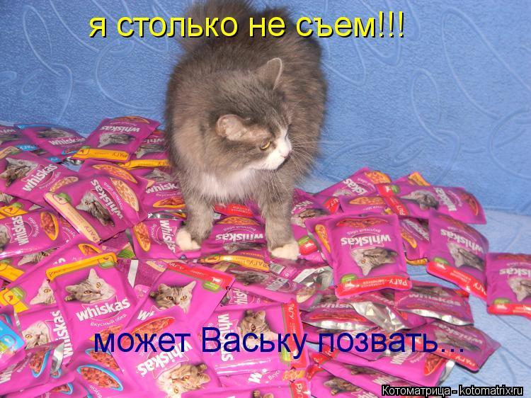 Котоматрица: я столько не съем!!! может Ваську позвать...