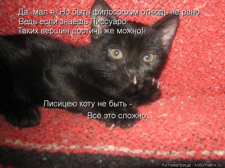 Котоматрица: Да, мал я..Но быть философом отнюдь не рано.. Ведь если знаешь Писсуаро... Таких вершин достичь же можно! Лисицею коту не быть -  Всё это сложно..