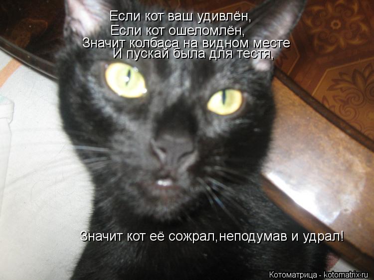 Котоматрица: Если кот ваш удивлён, Если кот ошеломлён, Значит колбаса на видном месте И пускай была для тестя, Значит кот её сожрал,неподумав и удрал!