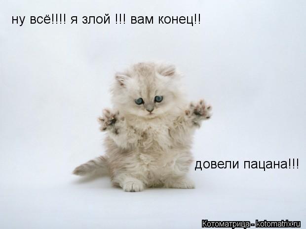 Котоматрица: ну всё!!!! я злой !!! вам конец!!  довели пацана!!!