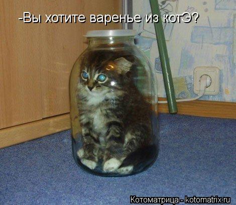 Котоматрица: -Вы хотите варенье из котЭ?