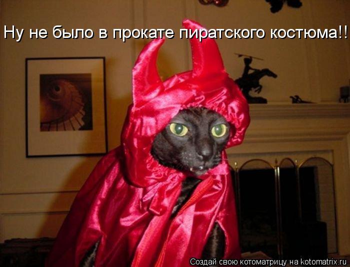 Котоматрица: Ну не было в прокате пиратского костюма!!!