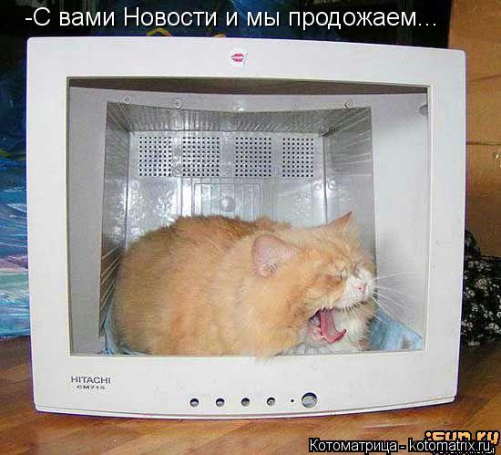 Котоматрица: -С вами Новости и мы продожаем...