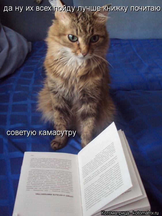 Котоматрица: да ну их всех пойду лучше книжку почитаю советую камасутру