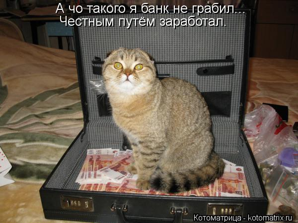 Котоматрица: А чо такого я банк не грабил... Честным путём заработал.