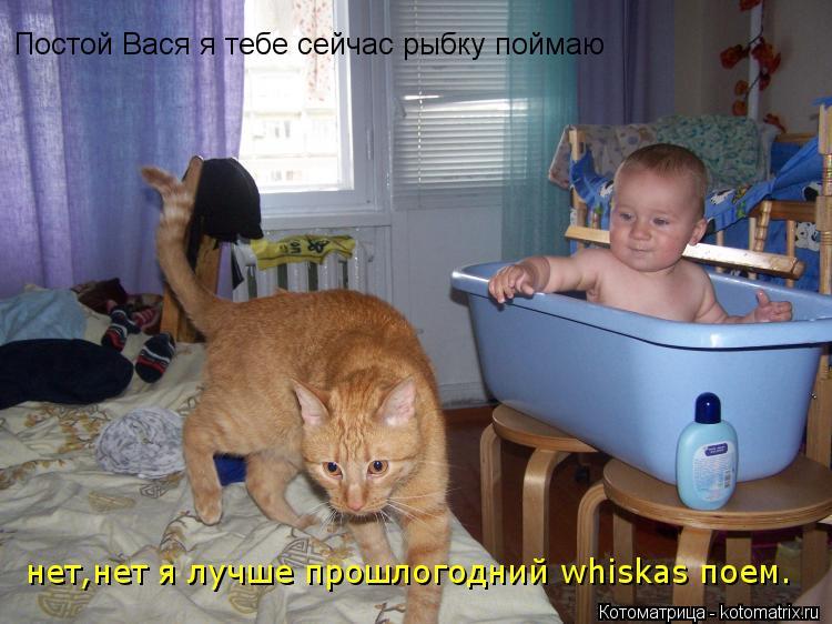 Котоматрица: Постой Вася я тебе сейчас рыбку поймаю нет,нет я лучше прошлогодний whiskas поем.