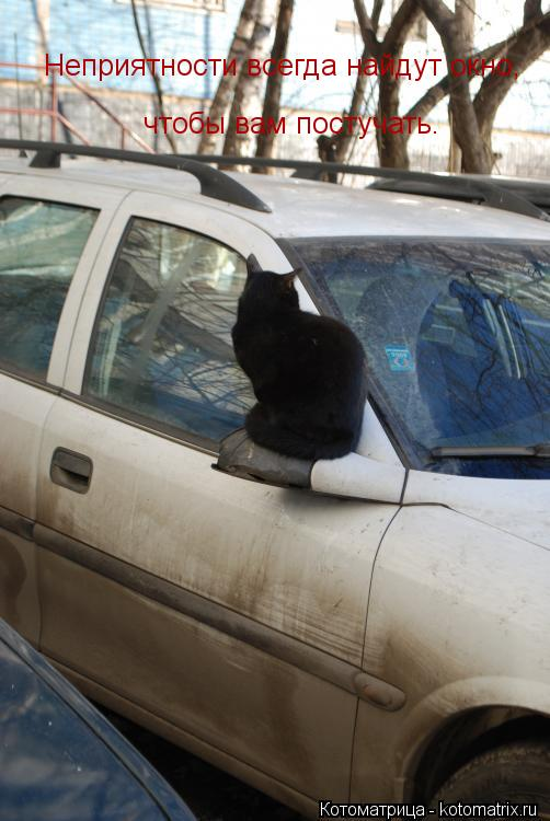 Котоматрица: Неприятности всегда найдут окно, чтобы вам постучать.